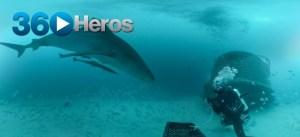 360Abyss Shark
