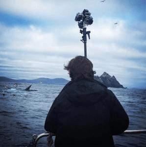 360h6-whales