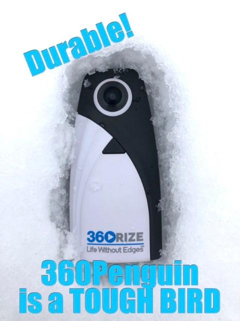 360Rize 360Penguin intheSnow Feature Image_(640x1024)