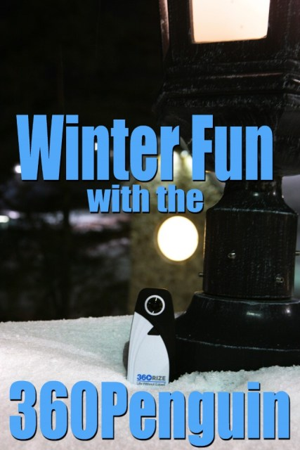 360Rize 360Penguin Winter Fun