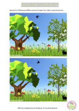 Jeu des 7 différences du printemps, jeu gratuit à imprimer