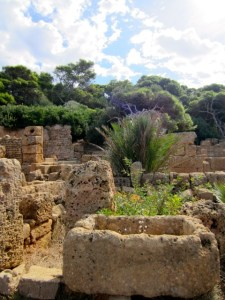 Römische Ruinen in Tipasa. ©Foto: Andreas Arnold