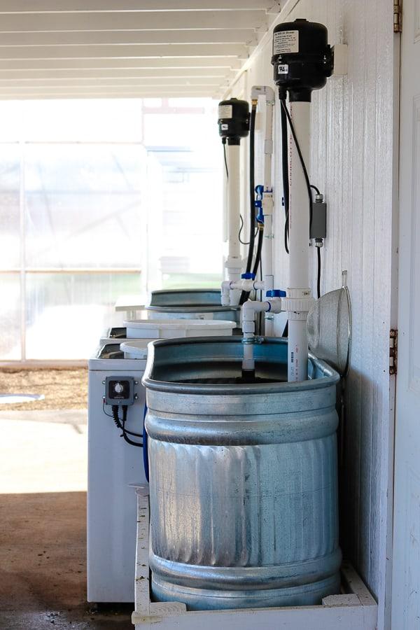 The wash basin at Steadfast Farm, Mesa, AZ.