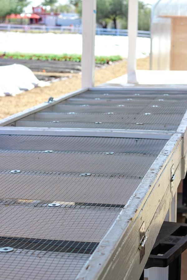 Produce drying rack at Steadfast Farm.