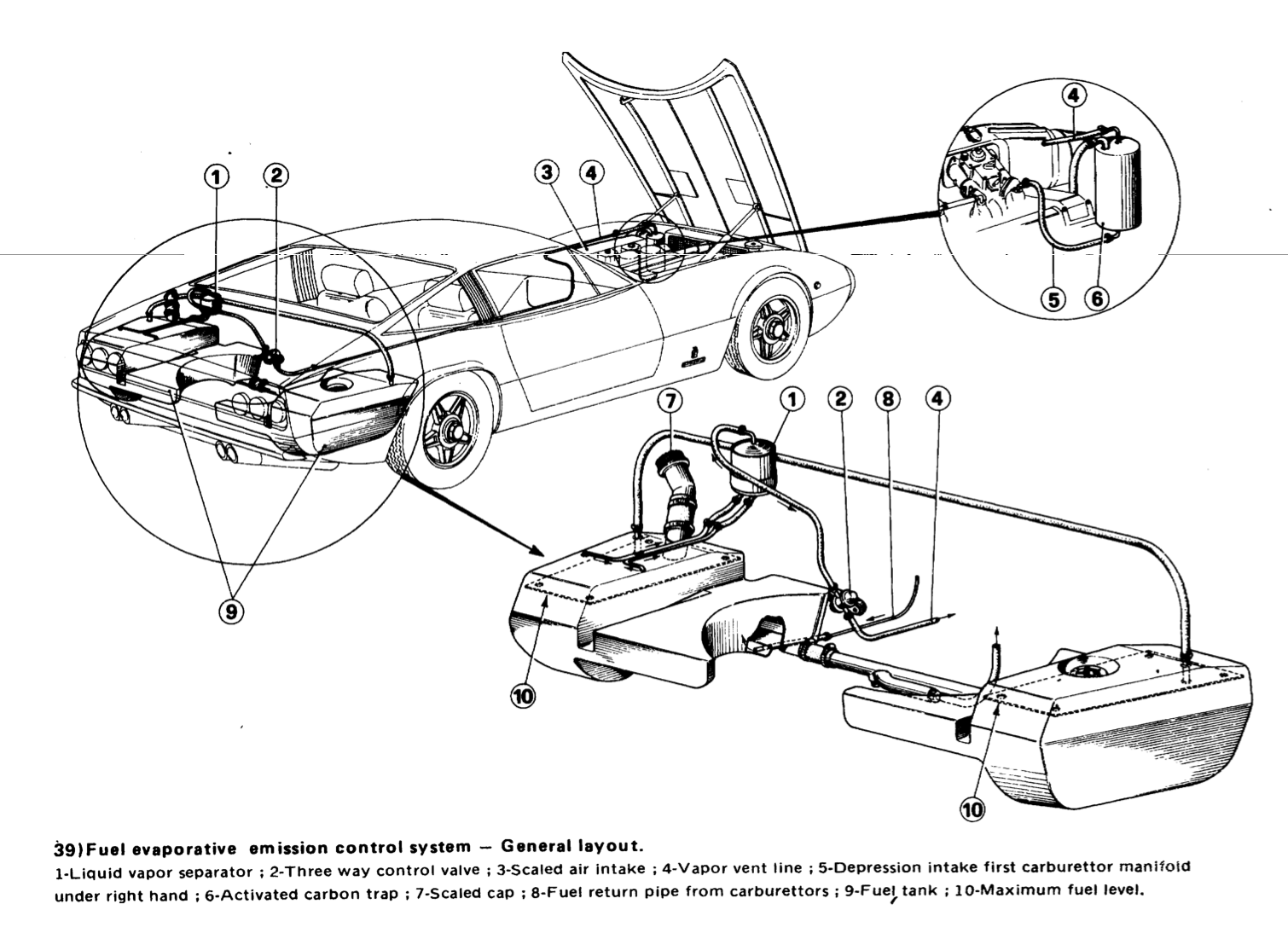 Ferrari Fuel Vapor Separator The Ferrari Car