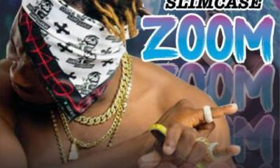 Slimcase – Zoom MP3