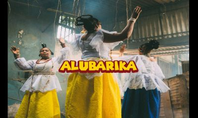 Zlatan Ft Buju - Alubarika MP3