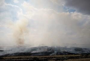 Burning crops