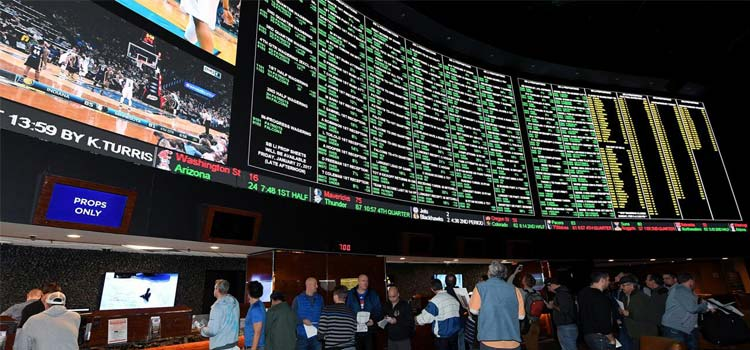 The Growing Business of Sports Betting