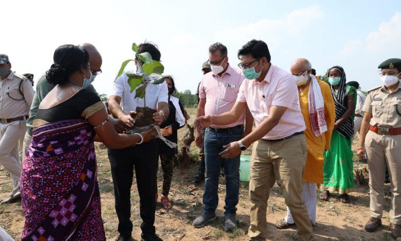 रायगढ़: मुख्यमंत्री वृक्षारोपण प्रोत्साहन योजना के तहत भिखारीमाल में हुआ वृक्षारोपण : कलेक्टर श्री भीम सिंह ने लगाया बेहड़ा का पौधा