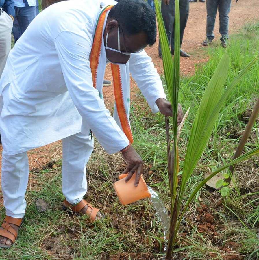 विश्व पर्यावरण दिवस के उपलक्ष्य में जिले में पौधारोपण अभियान का शुभारंभ