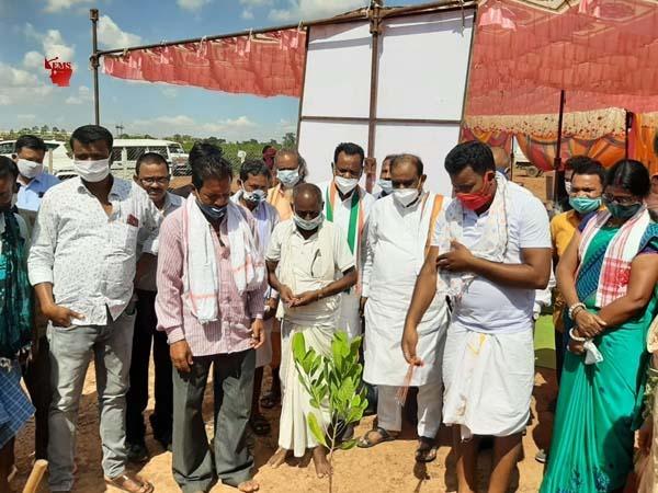 जगदलपुर: बकावंड में वन प्रबंधन समिति ने लगाए काजू और सीताफल के पौधे
