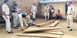 पांडुका से 27 नग बीजा चिरान जब्त