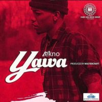 AUDIO / VIDEO: Tekno - Yawa