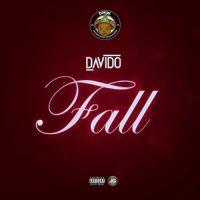 Snippet: Davido - Fall