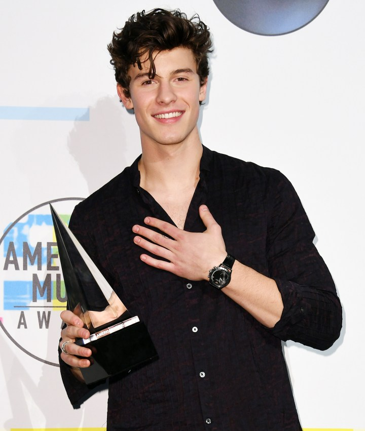 shawn mendes - American Music Awards 2017: Full List of Winners