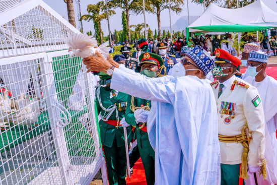 Armed forces day: Femi Adesina explains why the Pigeons refused to fly after they were released by President Buhari 1