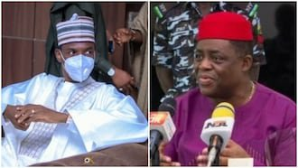 Stay in your lane, Buhari's aide reacts as Fani-Kayode addresses rumoured defection to APC 1