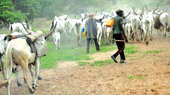 We have started relocating to Kano – Herdsmen 1