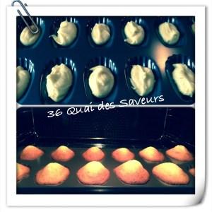 madeleines au miel Lenotre