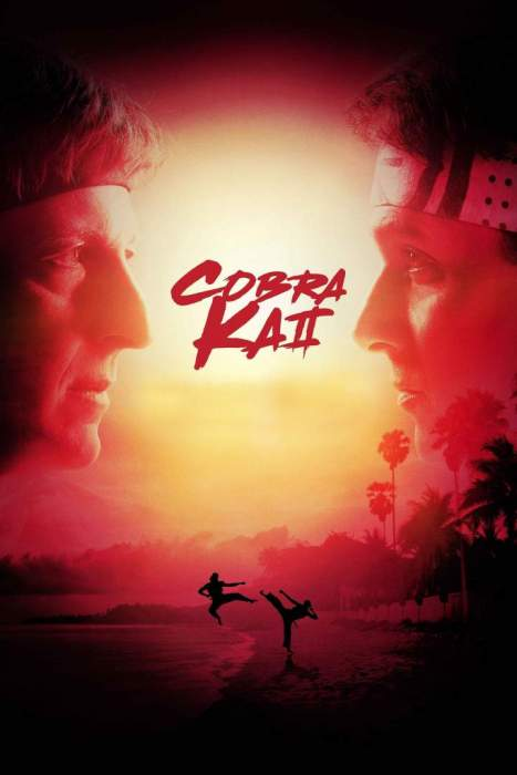 Cobra Kai Season 1 & 2 completed Episode with Subtitles Download Mp4 HD