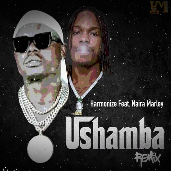 Harmonize ft. Naira Marley – Ushamba (Remix) MP3 Download