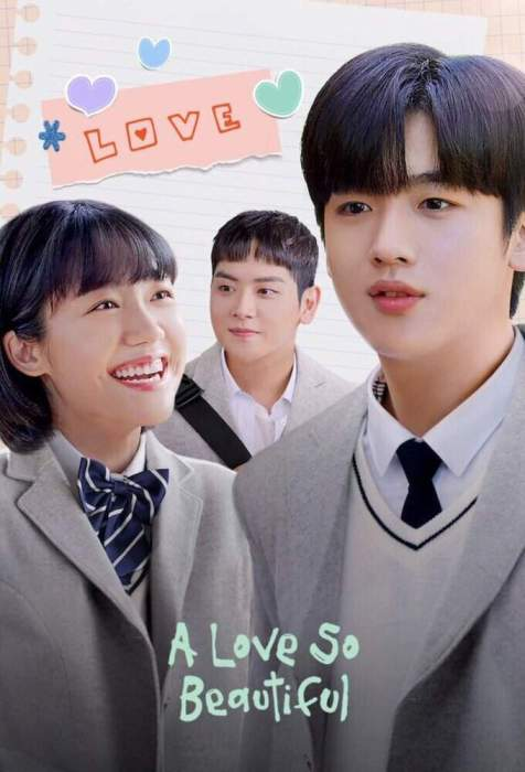 A Love So Beautiful Korean Drama Episodes Download Series With Subtitle MP4 HD