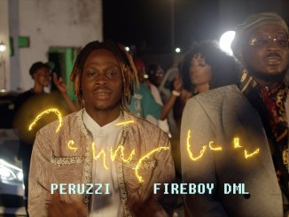Peruzzi Ft Fireboy DML Southy Love MP4 Download Video