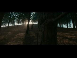 Fireboy DML Ft. D smoke - Champion Video MP4 Download
