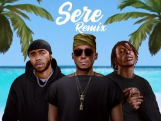 DJ Spinall – Sere (Remix) ft Fireboy DML & 6lack Mp3 Download