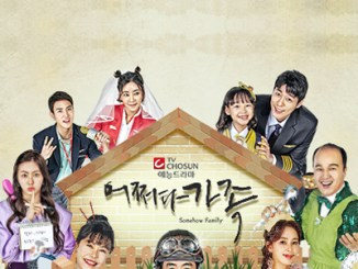 Accidental Family Season 1 Episodes Download MP4 HD and English Subtitles