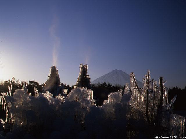 夜明けの氷柱/野鳥の森公園