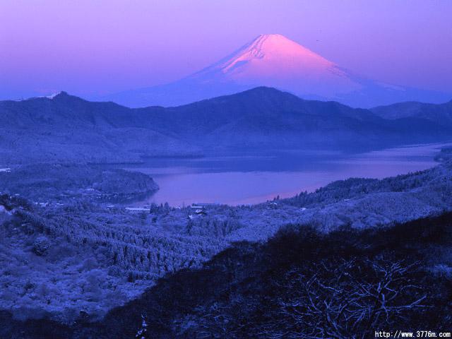 なごり雪/大観山