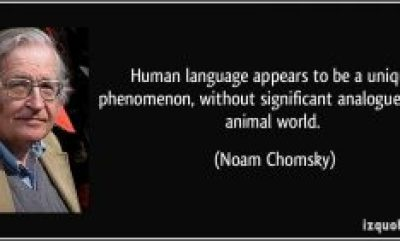 128588057-quote-human-language-appears-to-be-a-unique-phenomenon-without-significant-analogue-in-the-animal-world-noam-chomsky-36561