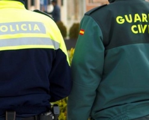 plazas policia nacional y guardia civil 2019