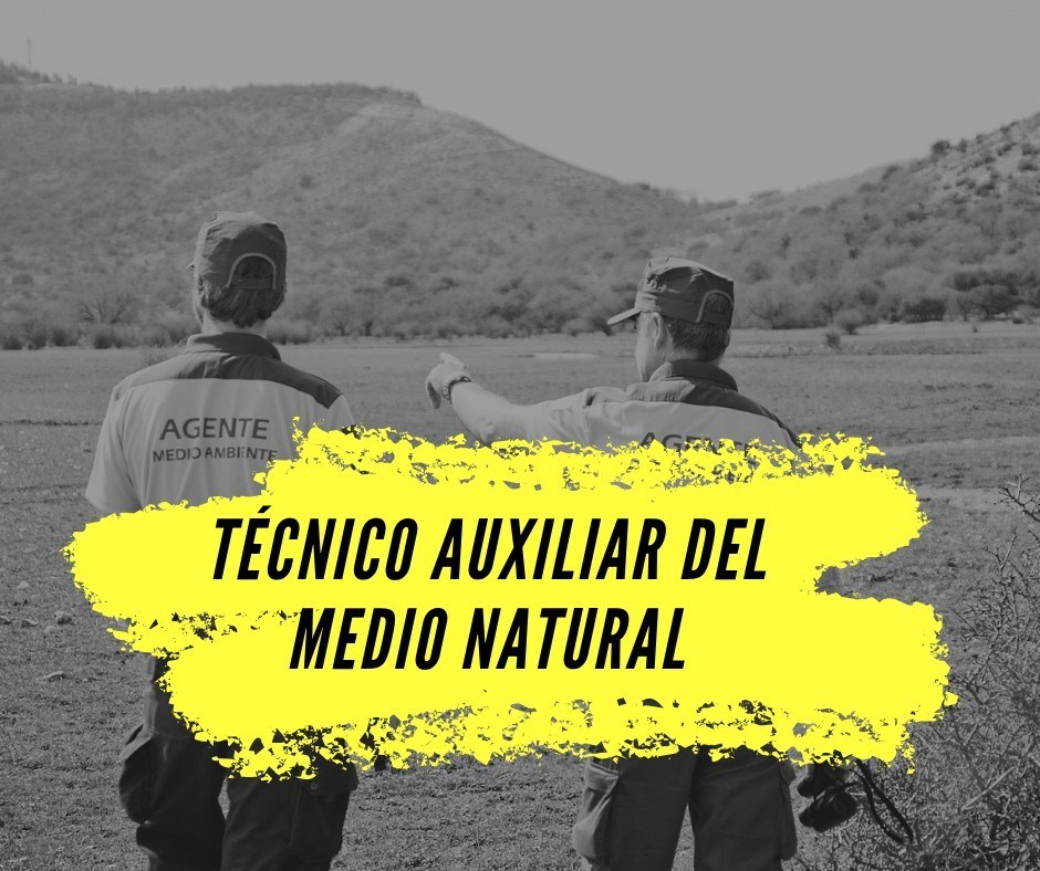 tecnico-auxiliar-medio-natural Resolucion concurso de meritos Auxiliar Medio Natural Cantabria