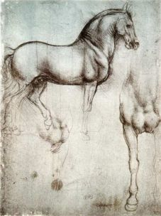 The anatomical Horse study by Leonardo Da Vinci