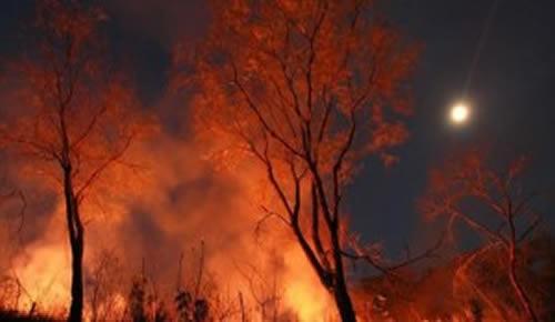 São mais de 60 fogos de queimadas registrada em um único dia.