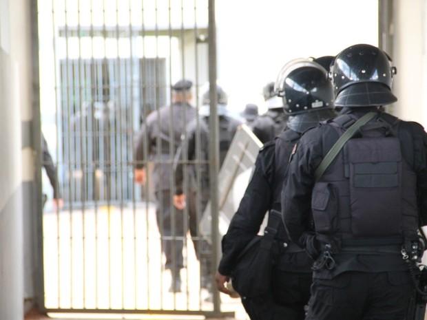Operação de varredura foi realizada no complexo penitenciário da capital (Foto: Asscom / SESP)