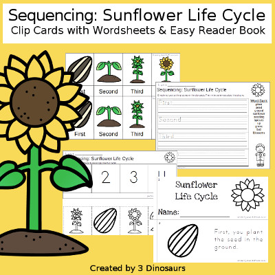3 Dinosaurs Sequencing Sunflower Life Cycle