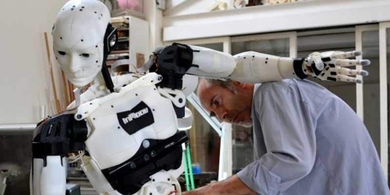 InMoov 3D printed robot