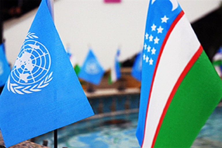 UNDP and Mininfokom of Uzbekistan Launched a Joint Project