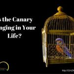 Is the Canary Singing in Your Life