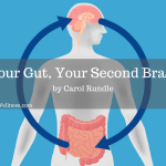 Your Gut, Your Second Brain