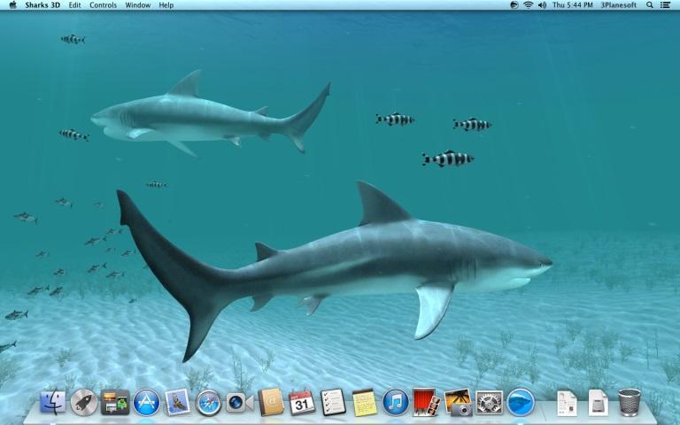 Sharks 3D 2.0.5 Mac 破解版 鲨鱼动态壁纸应用