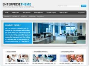 customize enterprise theme on genesis Framework
