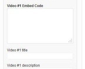 how to add theme junkie videos widget to genesis child themes