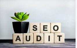 Do SEO Audit for your website