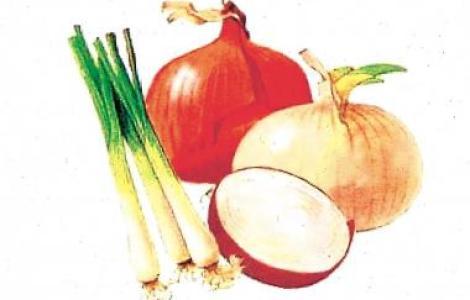 علاج السمنة بالاعشاب البصل يعالج السمنة المفرطة
