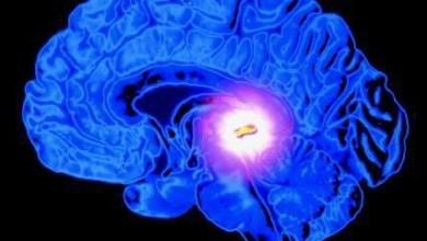 هل تستطيع الغدة الصنوبرية إيقاف نموالسرطان ؟؟